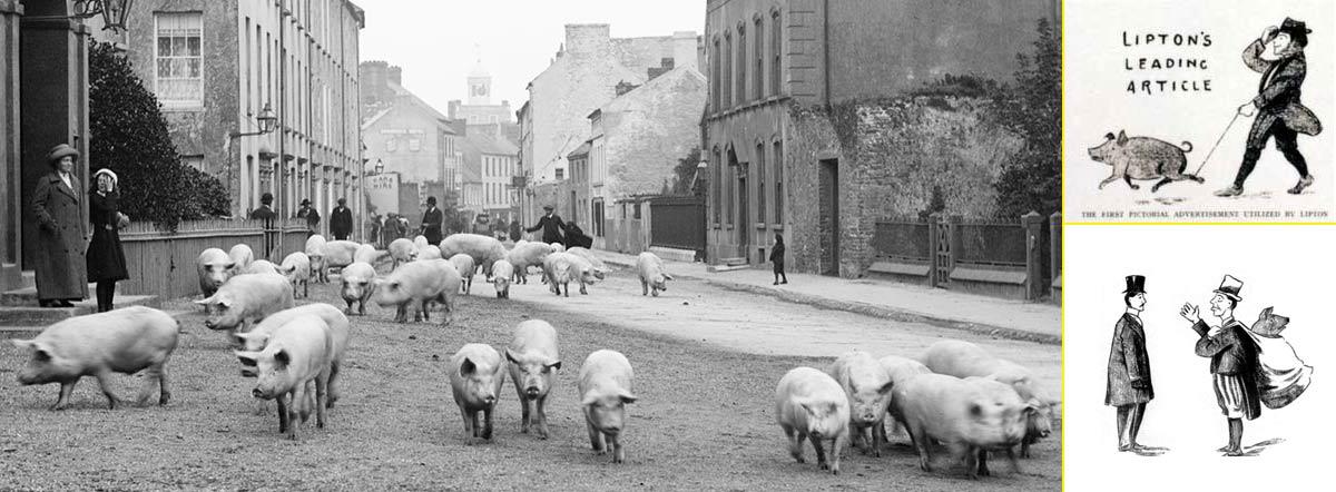 Sir Thomas Lipton promocionó sus tiendas con desfiles de animales y tiras cómicas en prensa