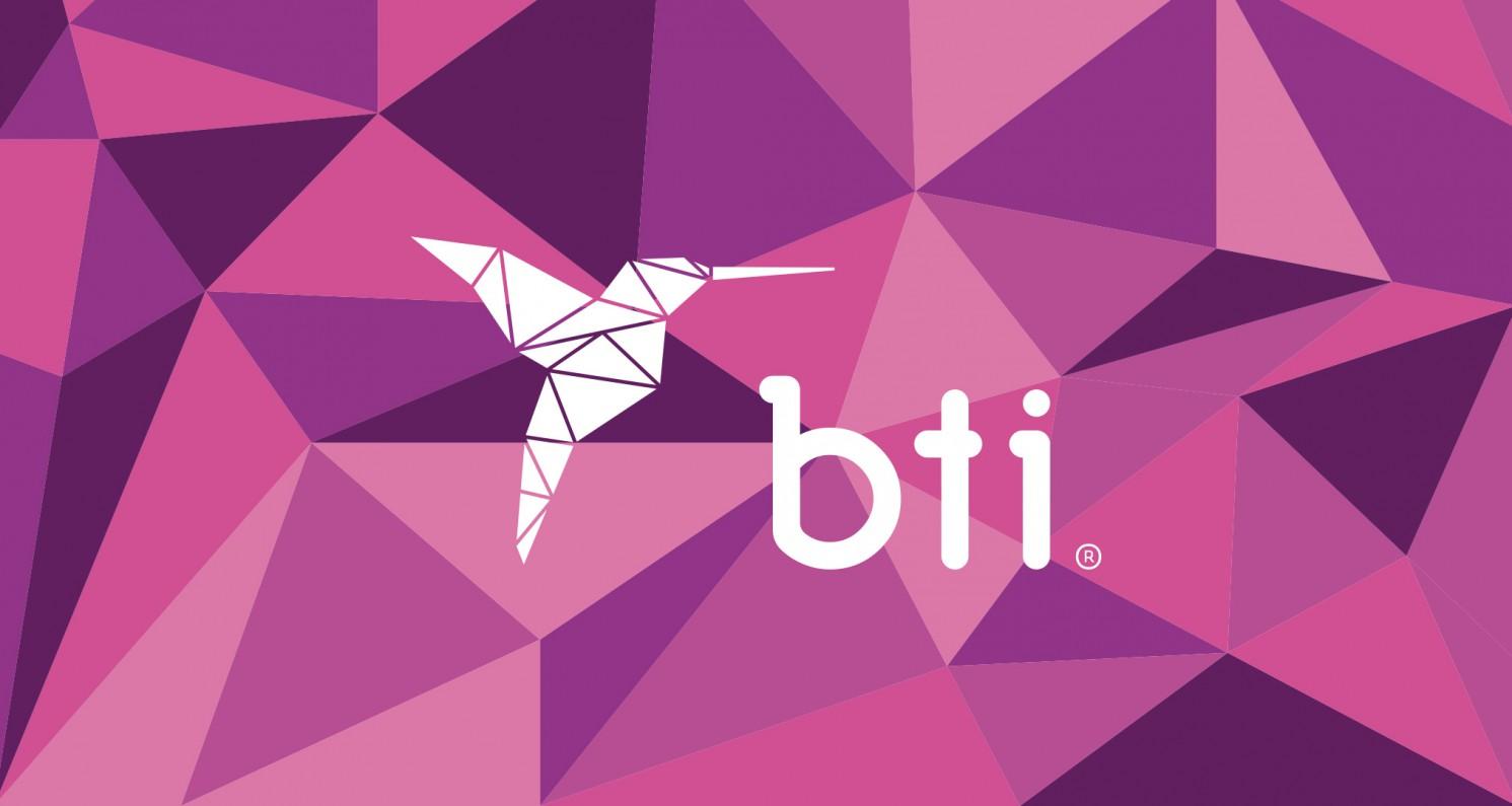 Proyectos / Bti