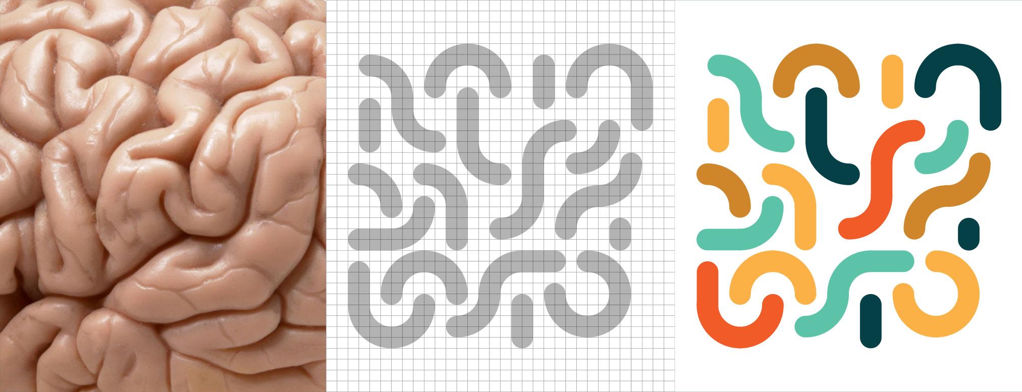 Tramas creadas en base al cerebro