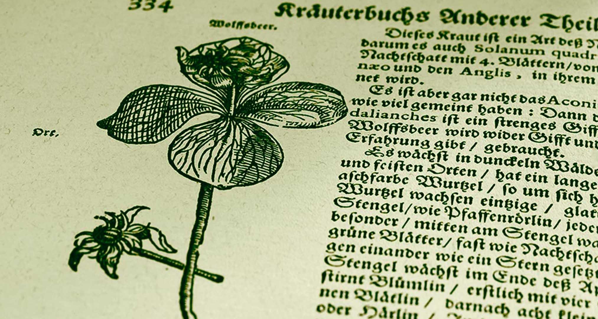 La receta de Jägermeister es un secreto desde su creación