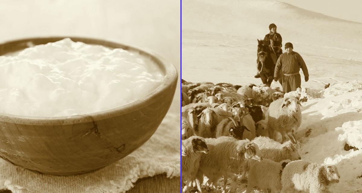 El yoghourt proviene de Asia Central y los Balcanes. Recibía el nombre de jaurt