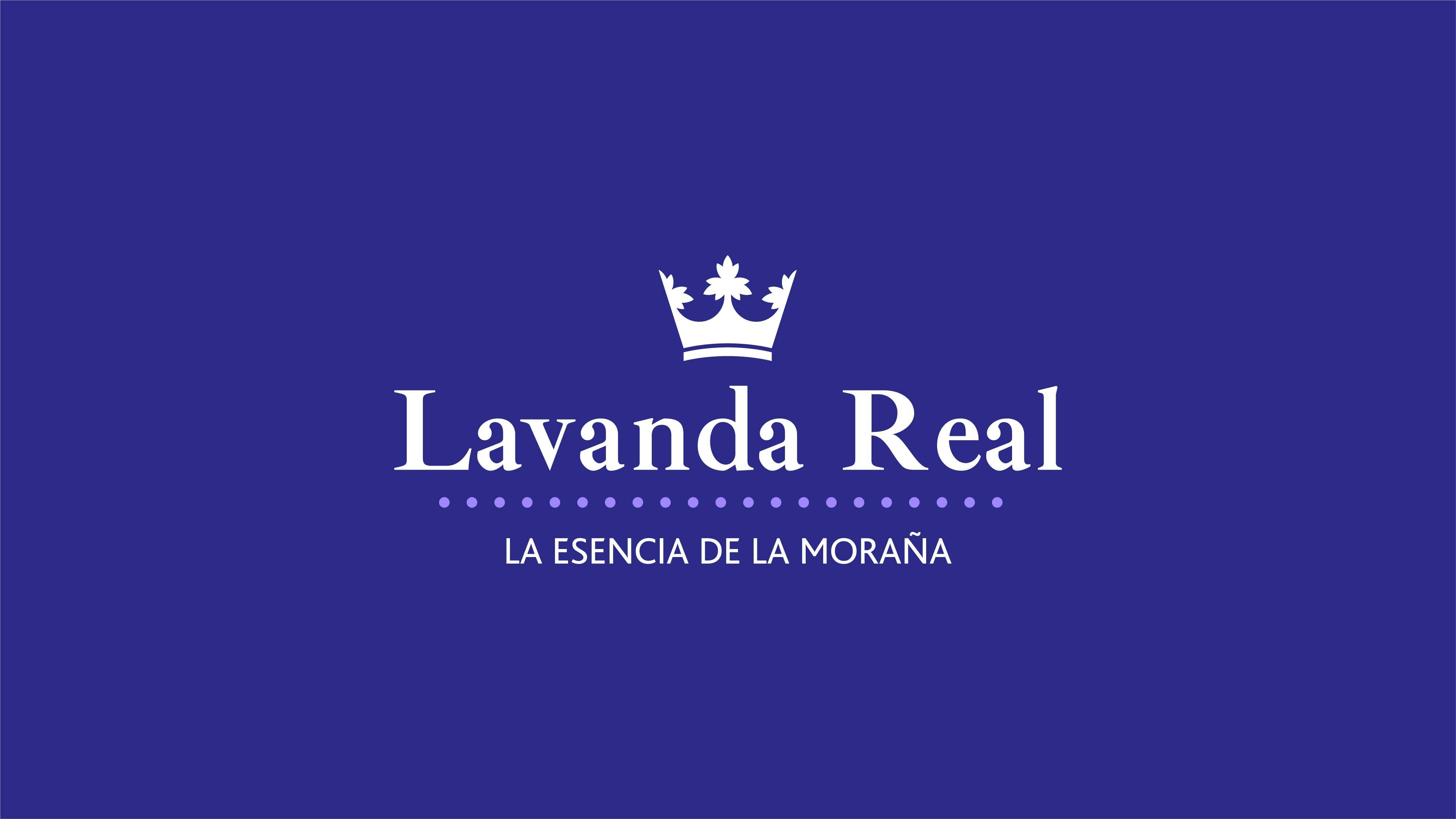 Lavanda Real - Branding BrandStocker